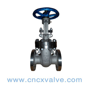 Flanged End Special Material Gate Valve