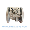 Flanged 2PC Ball Valve with Iso5211 Mounting Pad